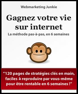 Un Guide pour Gagner sa Vie sur Internet